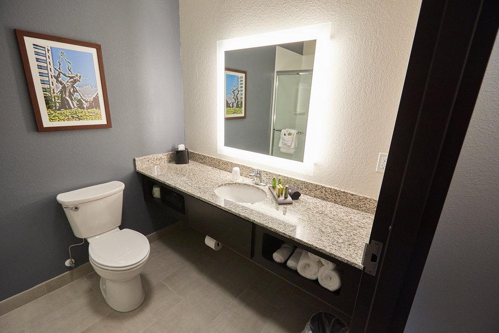 Gundersen Hotel and Suites - Studio Guest Room Bathroom.